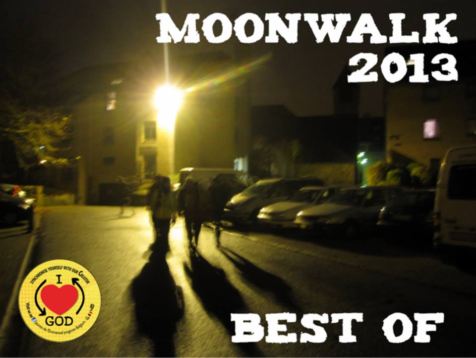 Moonwalk 2013 Flyer